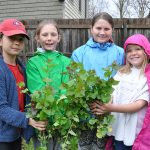 Youth join battle to contain Garlic Mustard