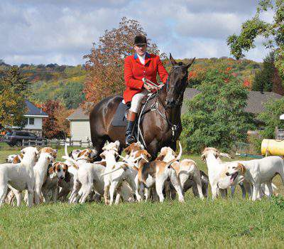 Toronto and North York Hunt rides to hounds Saturday